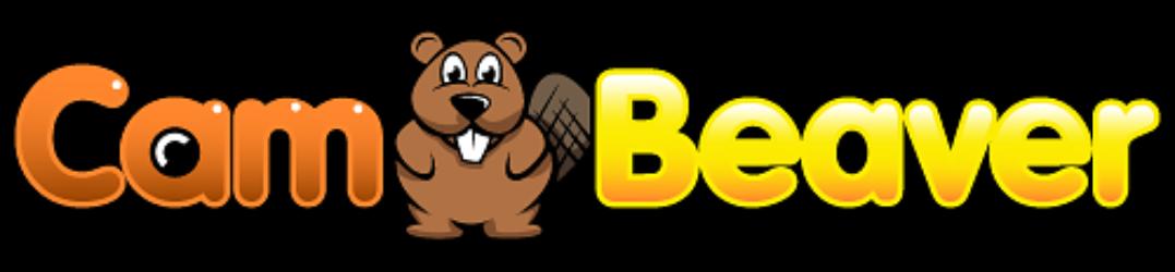 Cam Beaver Blog